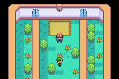 pokemon advanced adventure cheat codes walk through walls
