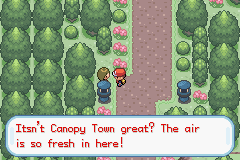Pokemon Black Orb Screenshot