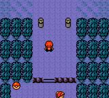 Pokemon Bronze Screenshot