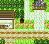 Pokemon Bronze Screenshot