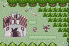 Pokemon Crazy Vie Screenshot