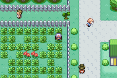 Pokemon Fire Red Infernos Screenshot