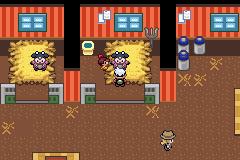 Pokemon Flora Sky Screenshot