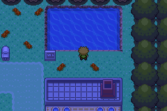 Pokemon Hack Screenshot