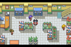 Pokemon Never Black & White Screenshot