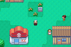 Pokemon OA Emerald Screenshot