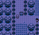 Pokemon Red ++ Screenshot