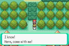 Pokemon Saga DarkViolet Screenshot