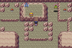 Pokemon Shiny Gold X Screenshot