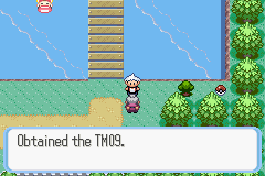 Pokemon Snakewood Screenshot