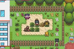 Pokemon Sovereign of the Skies Screenshot