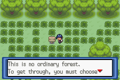 Pokemon Top Secret Screenshot
