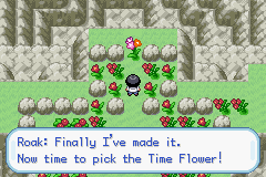 Pokemon Valen Screenshot