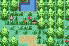 Pokemon Waterfall Screenshot
