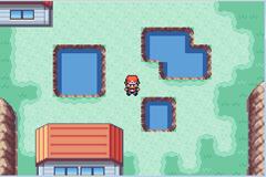 Pokemon World Tour Screenshot