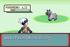 Pokemon Avventura a Fento Screenshot