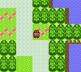 Pokemon: Awakened Legends Screenshot