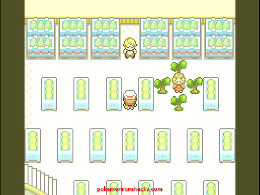 Pokemon Berry Hunt Screenshot