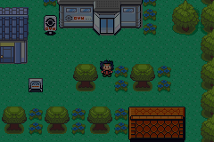 Pokemon DarkCopper Screenshot