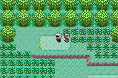 Pokemon Emerald Multiplayer Screenshot