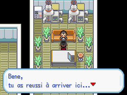 Pokemon Fire Black Screenshot