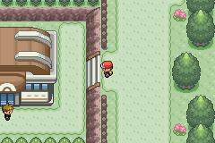 Pokemon Glacier Screenshot