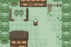 Pokemon Green Forest Screenshot