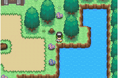 Pokemon Last King Screenshot