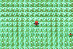 Pokemon Molden Screenshot