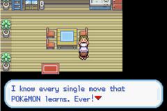 Pokemon: Pit of 100 Trials Screenshot