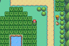 Pokemon Scarlet Blaze Screenshot