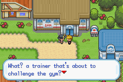 Pokemon Shiny Jewel Screenshot