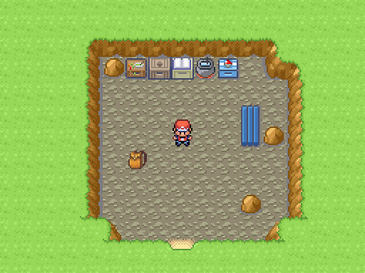 Pokemon Survival Island Screenshot