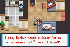 Pokemon The Legend of Anbuja Screenshot