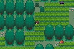 Pokemon Verde Musgo Screenshot