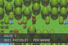 Pokemon Version Eclat Pourpre Screenshot