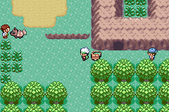 Pokemon Warps Screenshot