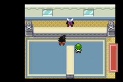 Pokemon Z Version Screenshot