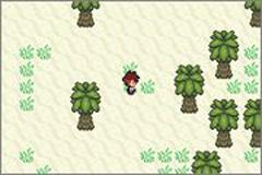 Pokemon Zandite Screenshot