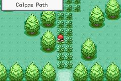 Pokemon Zoala Screenshot